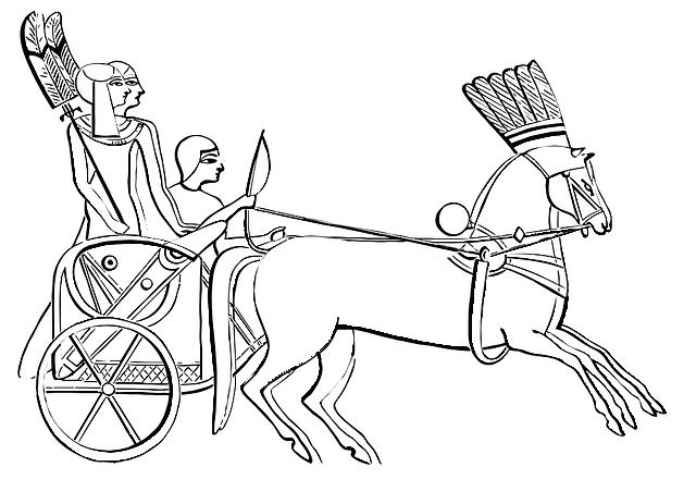 馬に引かれた乗り物に人が乗っている