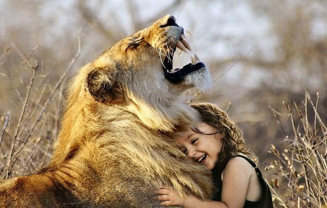 抱き合うライオンと子供