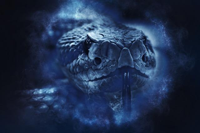 青一色で描かれた蛇の顔