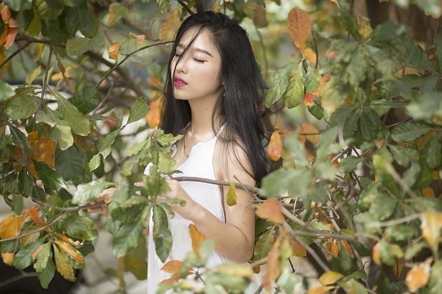 柏の樹の枝を掴む白いワンピースで黒髪の女性