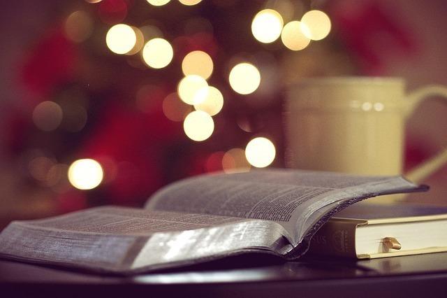 クリスマスツリーの前にあるテーブルに広げられた本