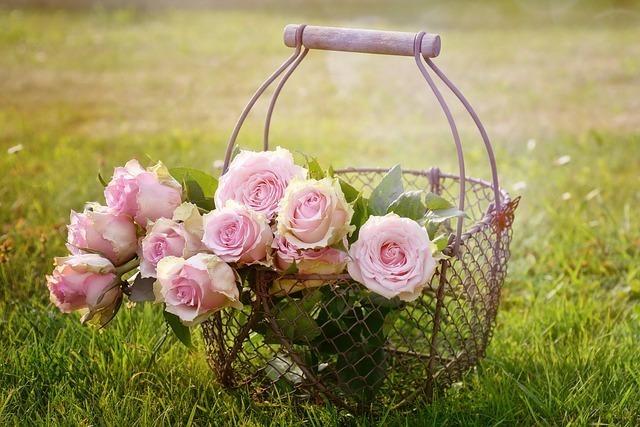 ピンクのバラが入った金網の花かご