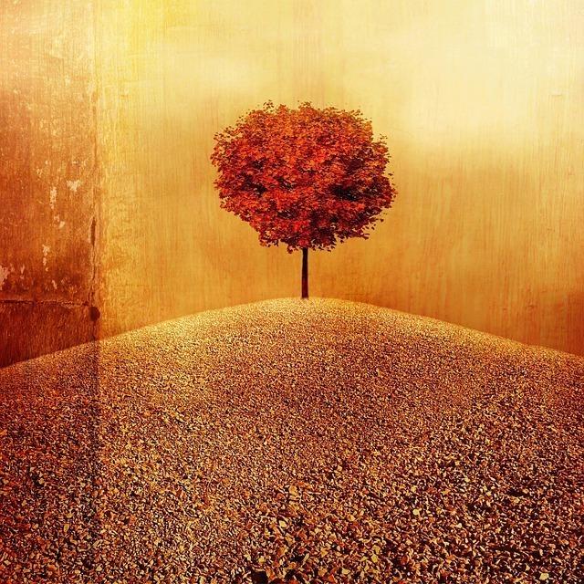 スピリチュアルなイメージの木