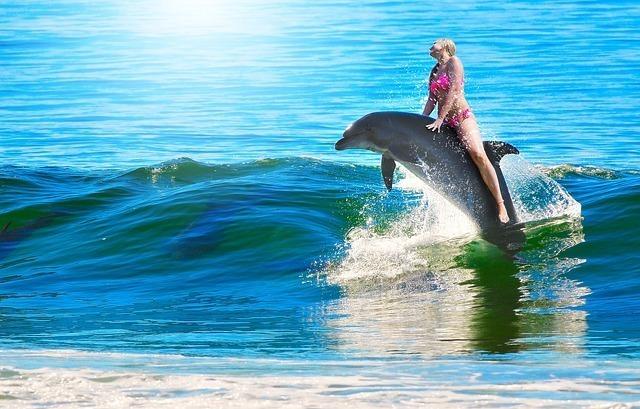 イルカに乗ってはしゃぐ女性