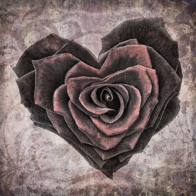 黒く乾いた薔薇がハートを模り心の渇きを表す画像