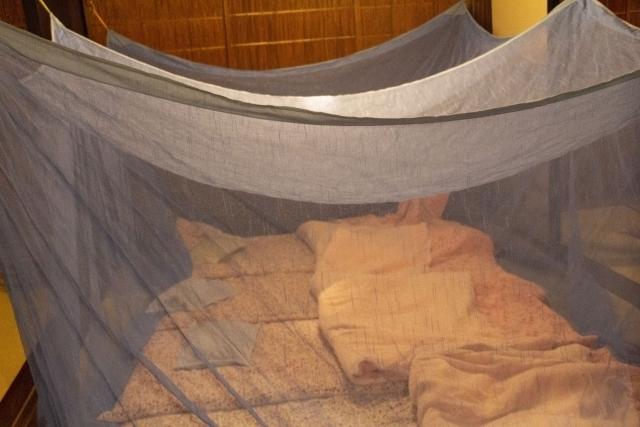 古民家で家族が川の字になって眠れる大きさの蚊帳を貼っている画像