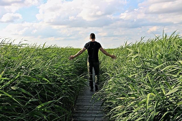 草原の中を歩く男性