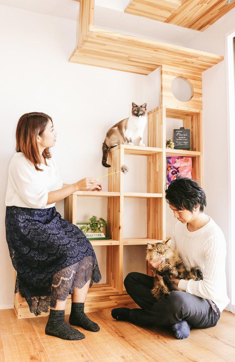 猫カフェで各々楽しむ男女の画像