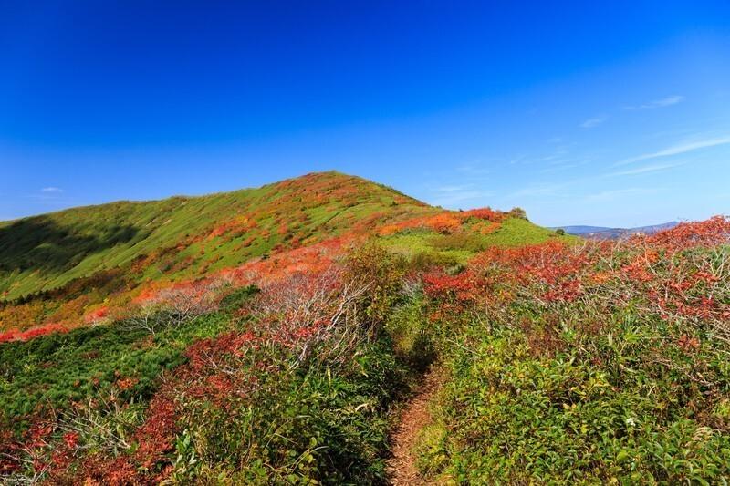 紅葉し始めた山の風景