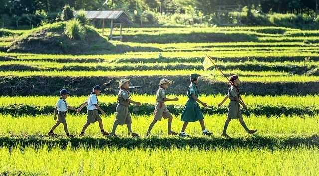 畑の中を歩く子供たち