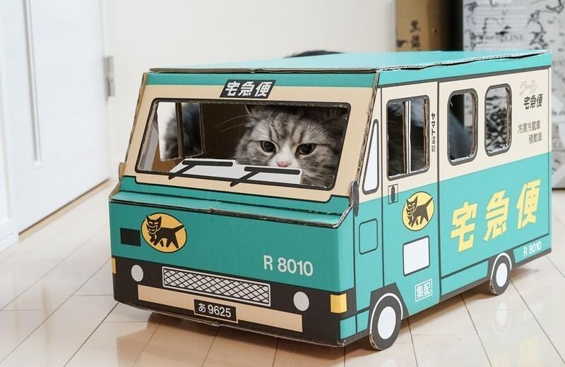段ボールで出来たクロネコヤマトの宅急便の車に乗った猫