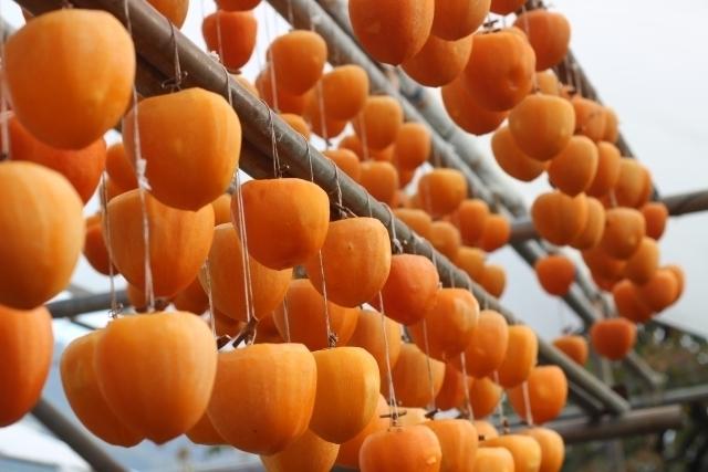 干されている柿