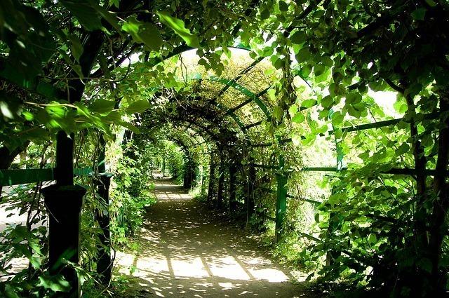 トンネルの先は未知の世界