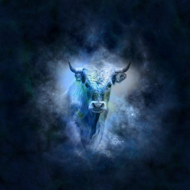 牡牛座の図