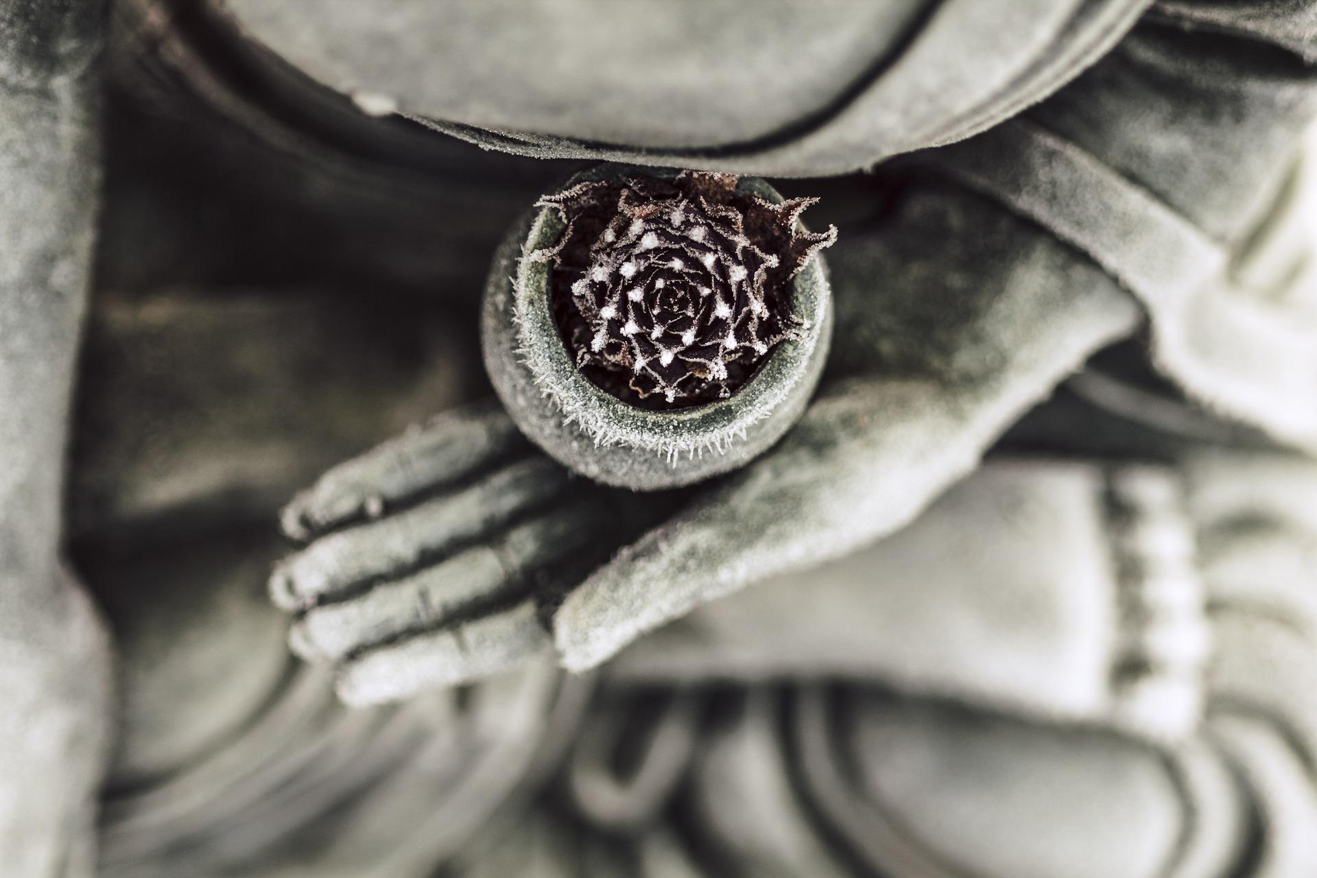 仏像が花の入った壷を持っている