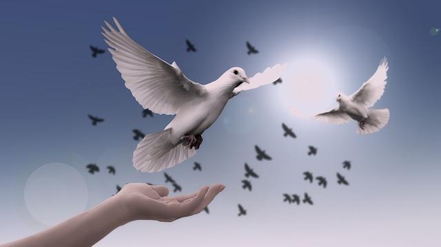 平和のシンボル・鳩
