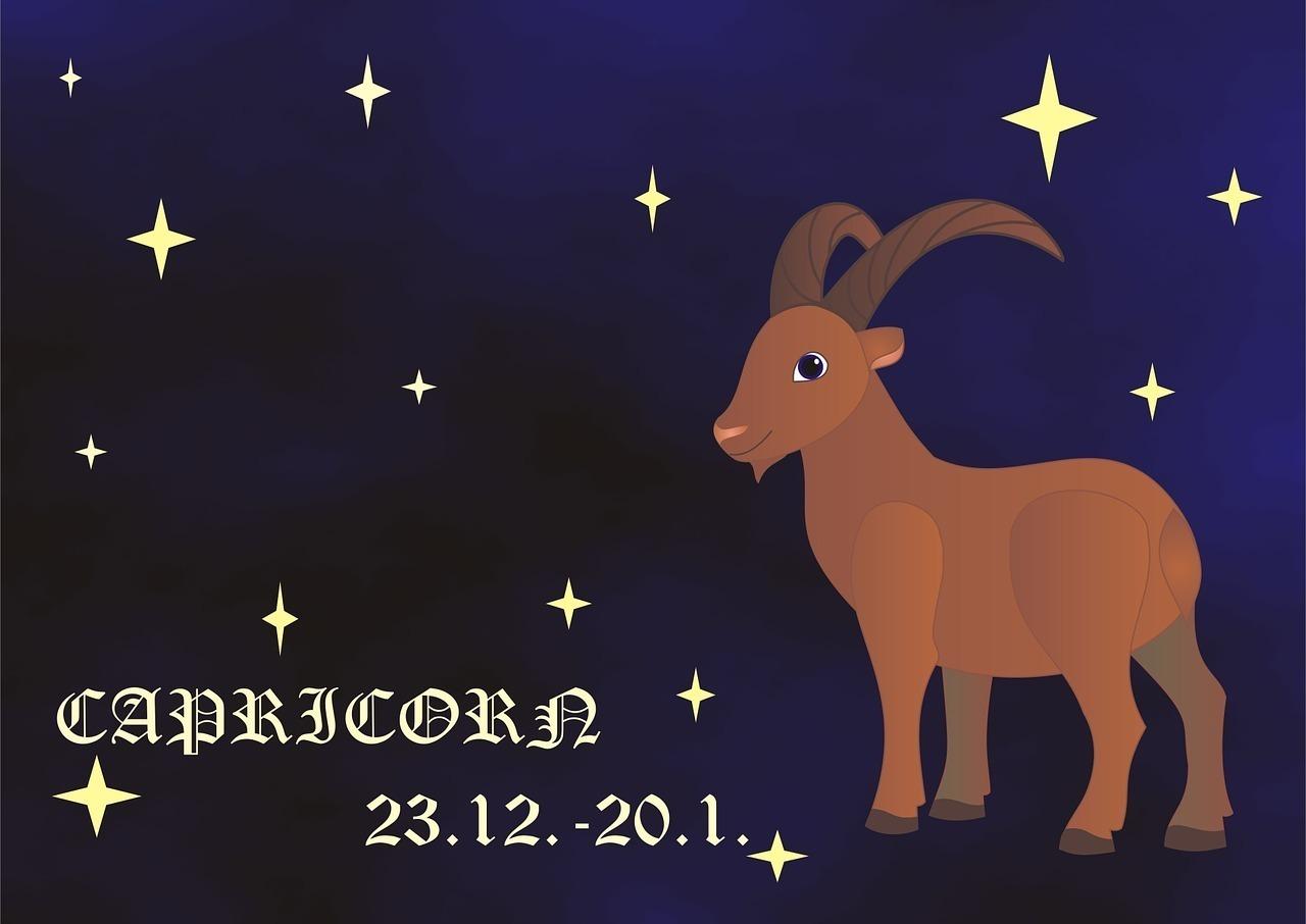 ヤギと星空のイラスト