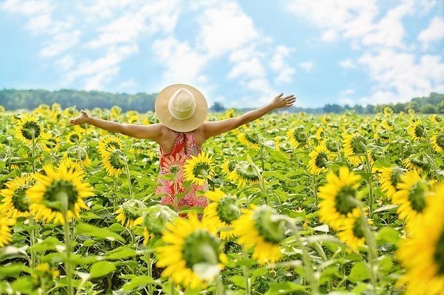 ひまわり畑で手を広げる女性