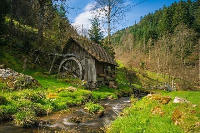 大自然の中にポツンとある小屋