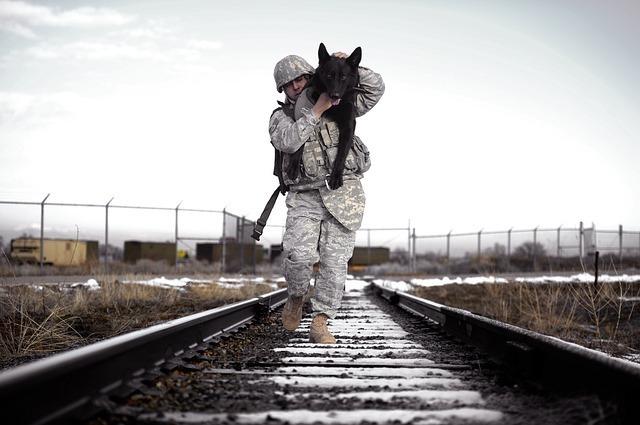 傷ついた犬を抱えて運ぶ男性
