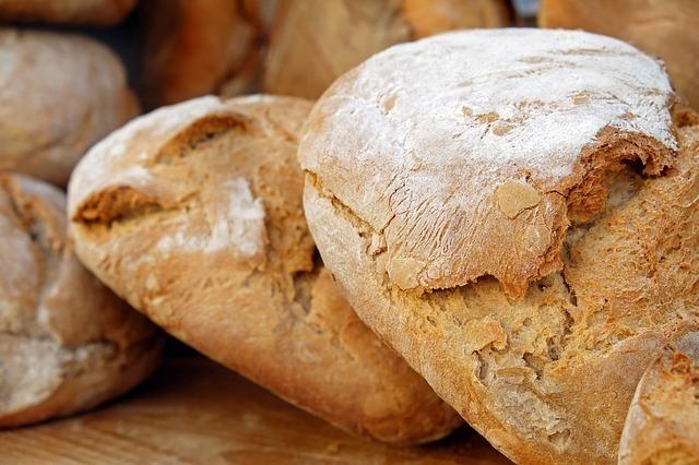 パンは手軽に食べられるけどカビが繁殖しやすい