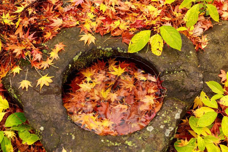 秋の大型連休「シルバーウィーク」とは何?