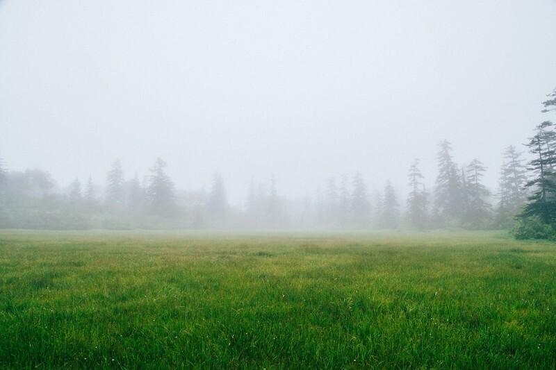 降り方による雨の名前と種類の一覧