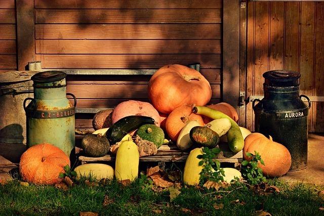 秋の風物詩(あきのもの)で連想する行事