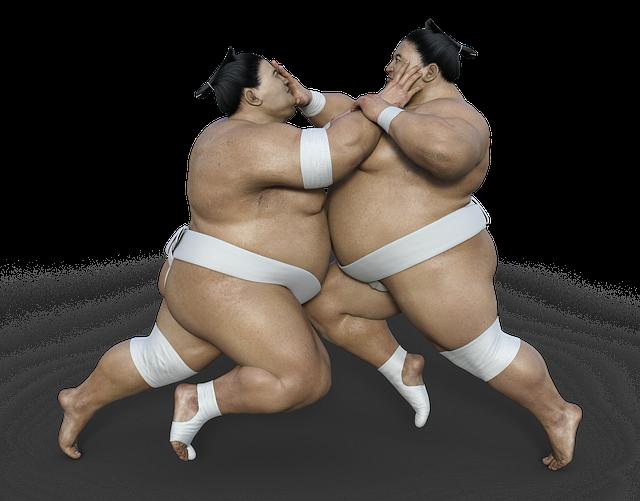 相撲は日本の国技じゃない?