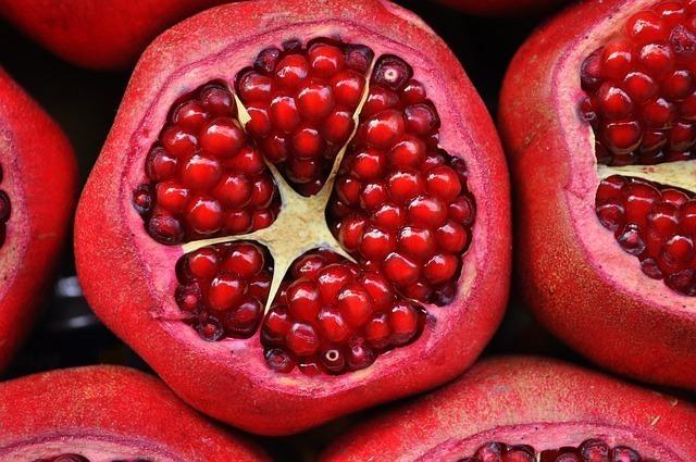 サ行の果物