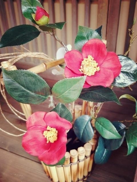 鉢植えに植えた椿