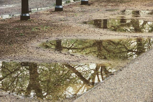 暦の「雨水」の意味とは?
