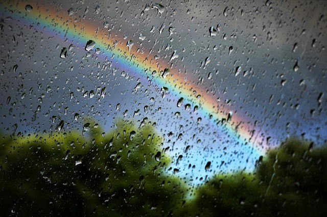 雨の中かかる虹