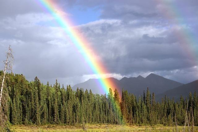 サンキャッチャーで虹ができる?