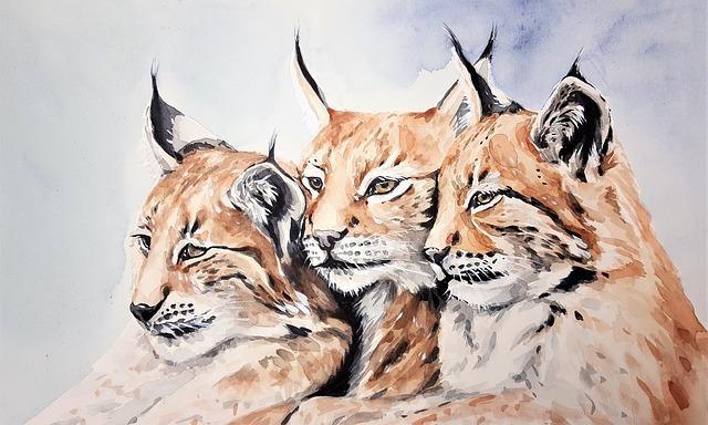 違う表情を浮かべるライオンたち