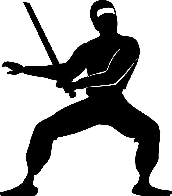 実在した忍者5選をランキングで紹介【伝説/身体能力】