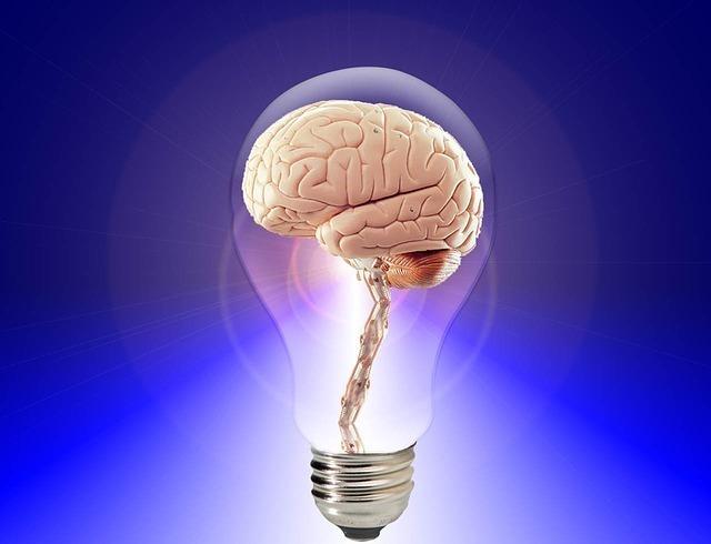 豆電球に収まった脳