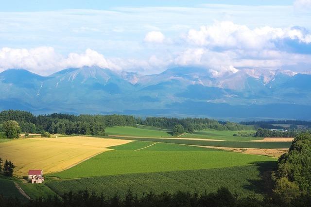 「おだつ」は北海道や東北、関西で使われている方言