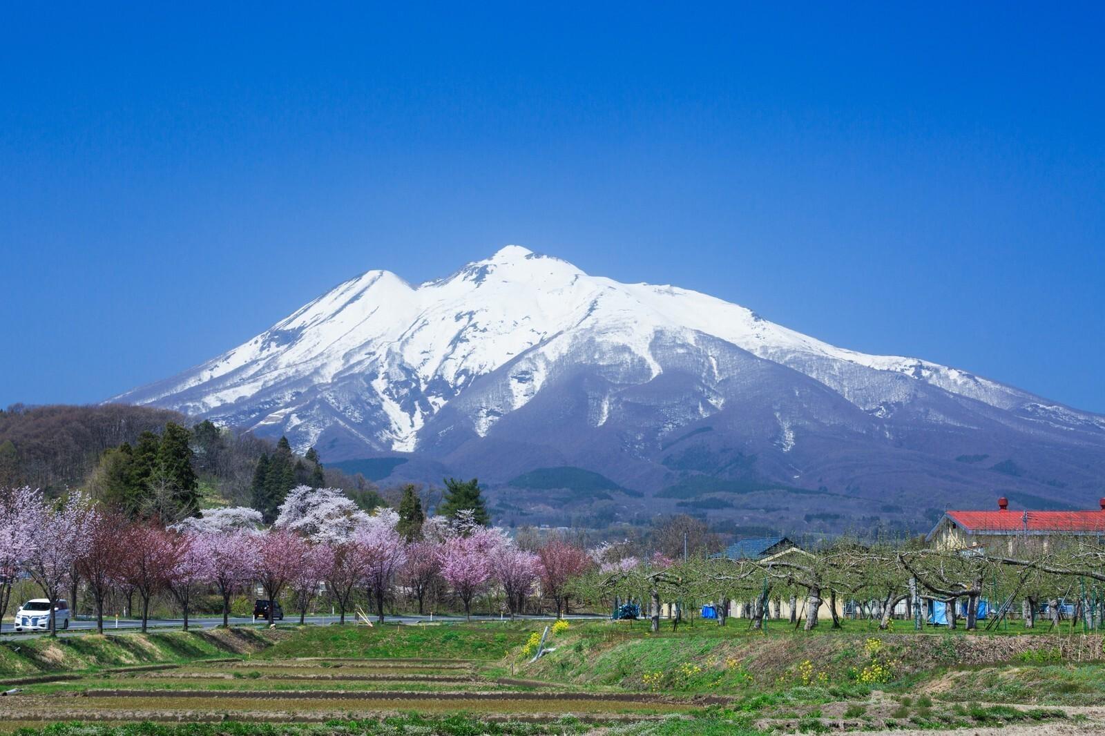 津軽富士を望む風景