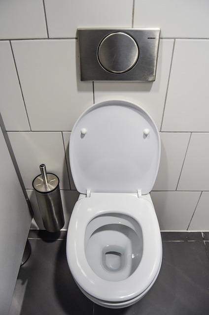 トイレで大便をする夢