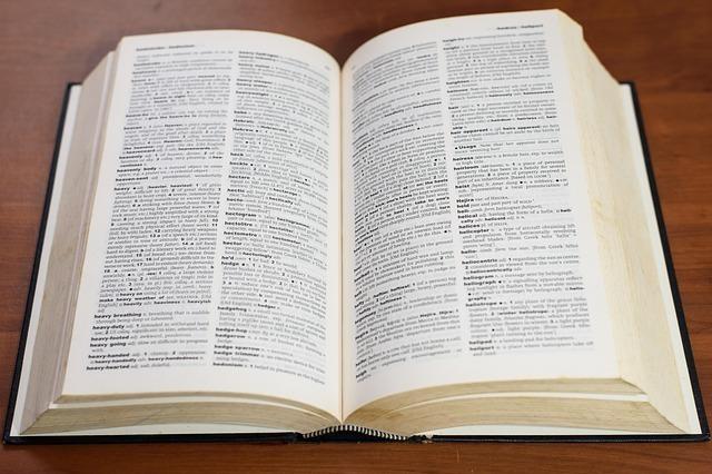 言葉の意味が書かれた辞書