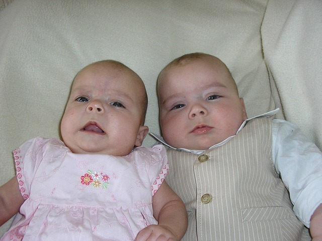双子の赤ちゃんを産む夢