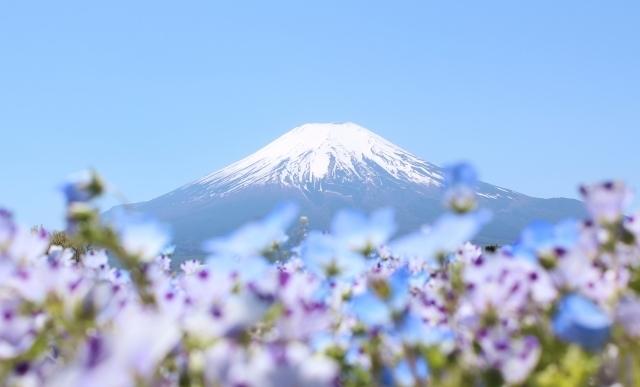 富士山の夢の基本的な意味と心理を診断!