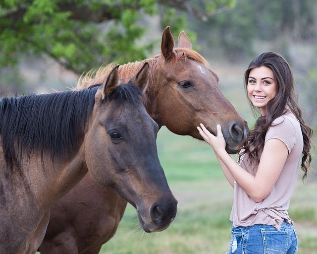 好きな人と馬に乗る夢