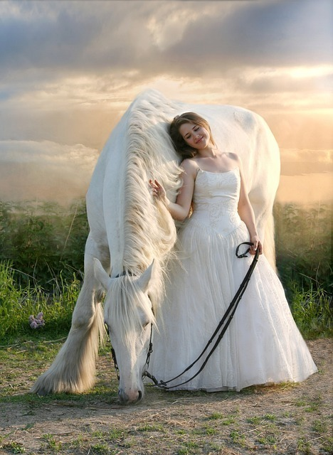 夢占いで白馬は恋愛運の象徴