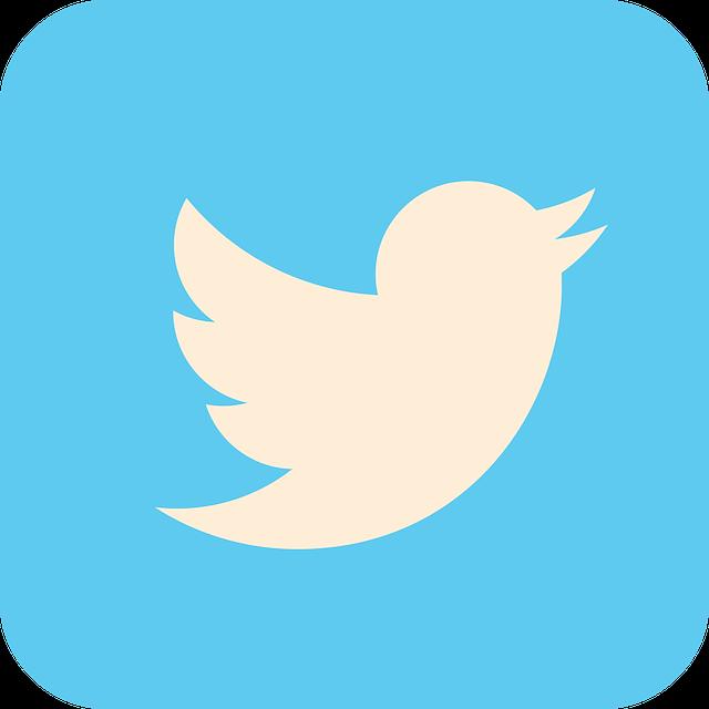 Twitterで使われるネットスラング