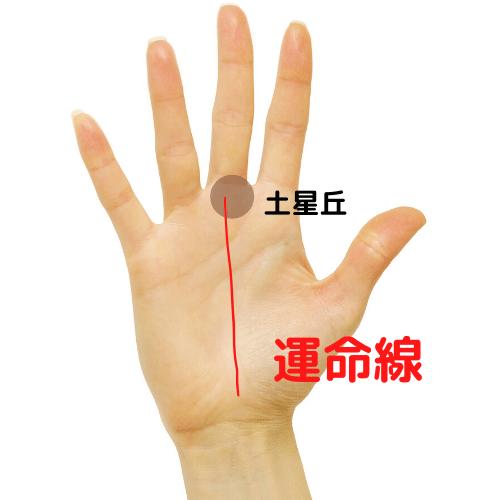 運命線の位置の図