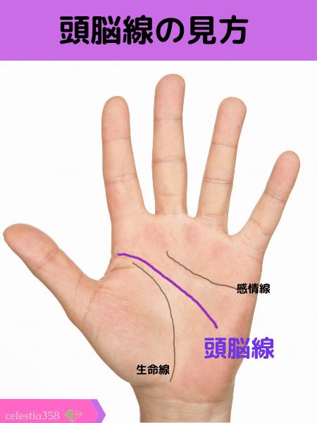 頭脳線の手相の見方