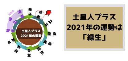 土星人プラスの2021年の運勢