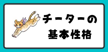 動物占いチーターの基本性格